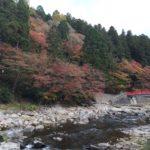 愛知県で最も有名な紅葉スポット「香嵐渓」に行ってみた話